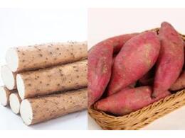红薯和山药豆可以一起同时煮着吃吗
