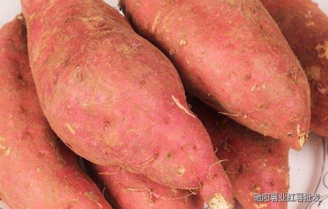 板栗薯和红薯的区别有哪些