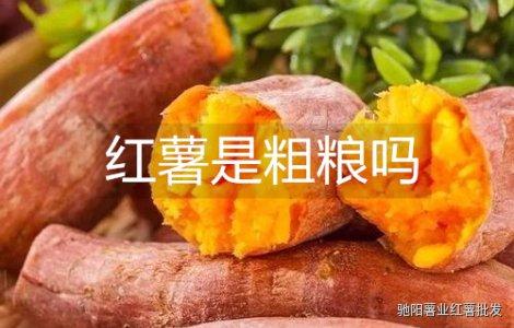 红薯是粗粮吗是不是不好消化