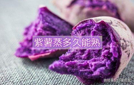 紫薯蒸多久能熟