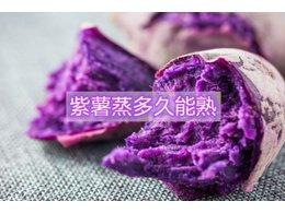 紫薯红薯一般蒸多久能熟透
