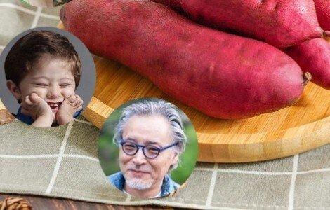 地瓜是红薯吗