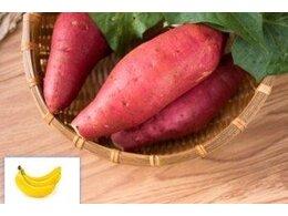 香蕉红薯能一起吃么为什么
