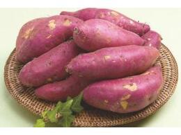 吃红薯为什么能有抗癌的效果