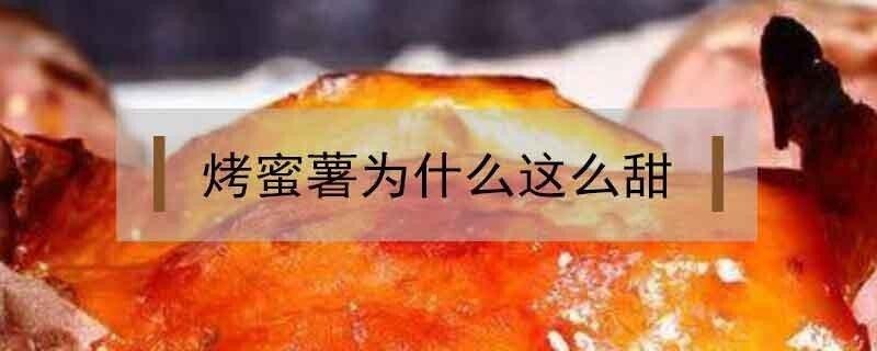 街上的烤蜜薯为什么那么甜