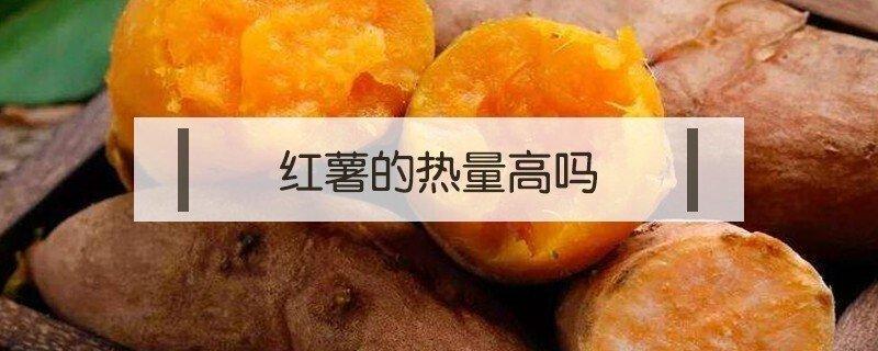 红薯的热量高还是米饭的热量高