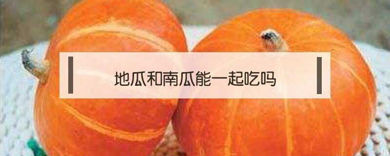 红薯和南瓜能一起同吃吗