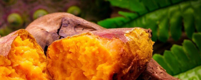 红薯皮能吃吗有什么营养和功效