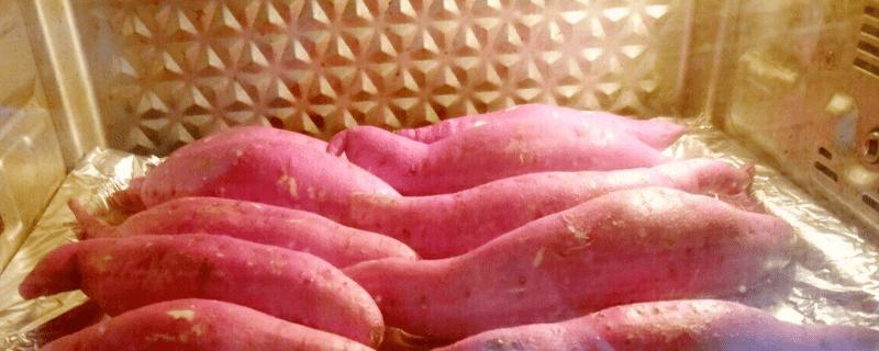 用烤箱烤红薯的小窍门你知道哪些
