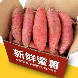 【烟薯25号】烤红薯专用红薯批发